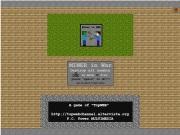 Minecraft In W…